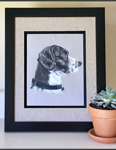 Treebok Charcoal Pet Portraits